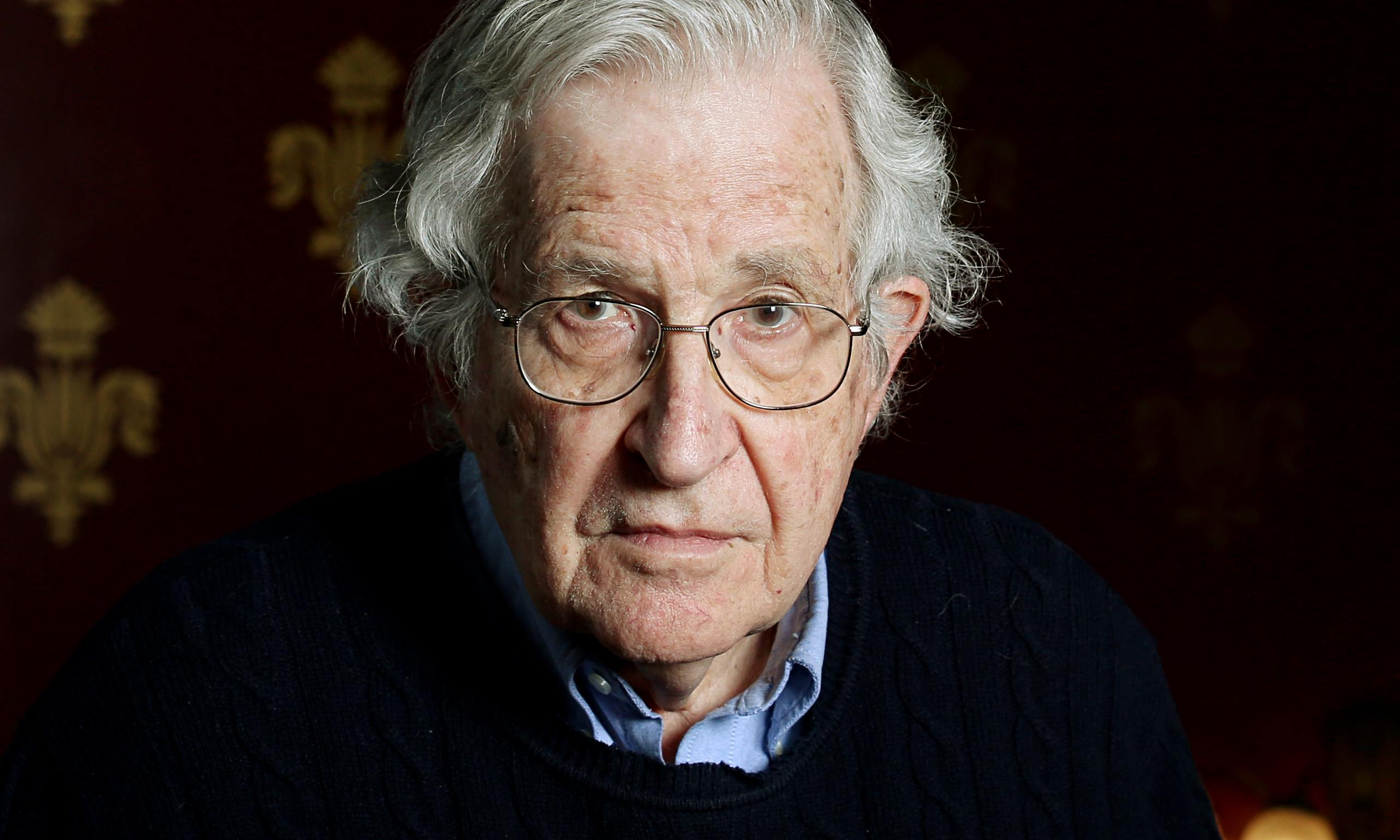 org noam chomsky in chicago